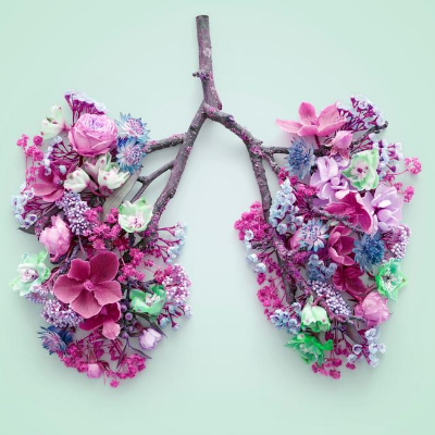 flowers that look like lungs
